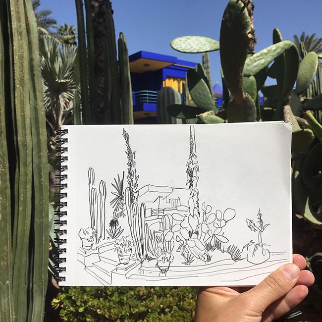 jardins-majorelle-vaguegraphique-marrakesh-maroc