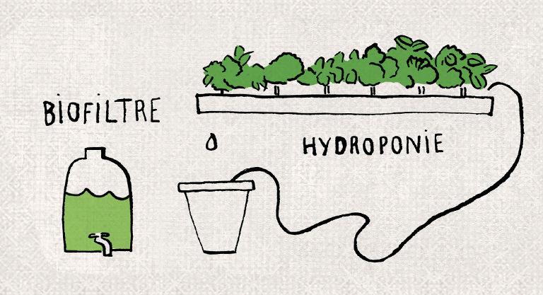 biofiltre-hydroponie-texture