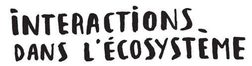 interactions-ecosysteme