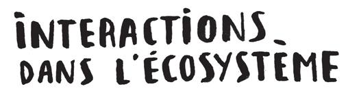 interactions-ecosysteme