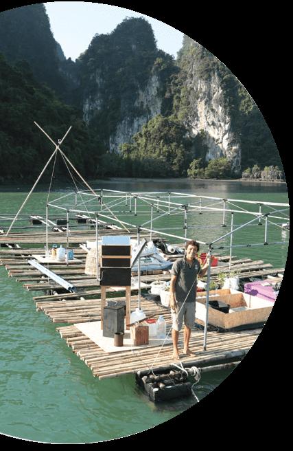 plateforme-biosphere-thailande