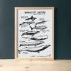 whales-in-danger-baleine-vaguegraphique-tirage